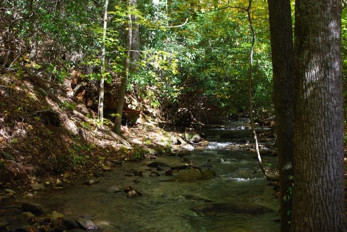 I love fall...and mountain streams...