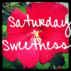 saturday sweetness