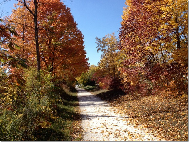fall-bike-path